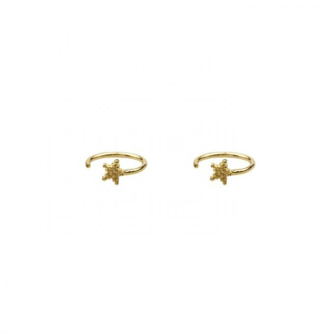 Dotted Star Earring Goldplated